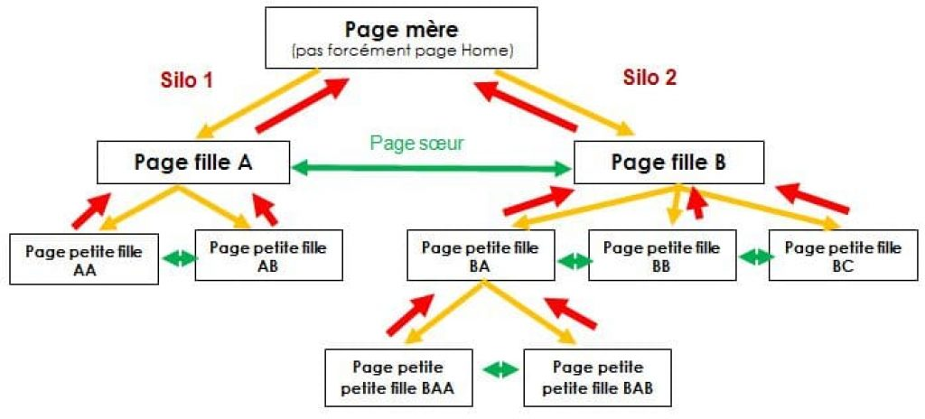 Schema cocon semantique